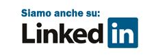 luxia web agency linkedIn
